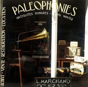 paleophonies vitrine boutique